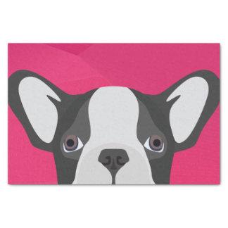 Illustrations-französische Bulldogge mit rosa Seidenpapier