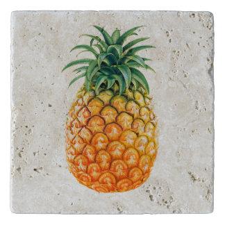 Illustrierter Ananasentwurf Töpfeuntersetzer