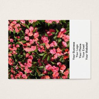 Impatiens Gruppen-Blumen rot Jumbo-Visitenkarten