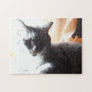 In die helle sonnige Katze oder machen Sie Ihre Puzzle