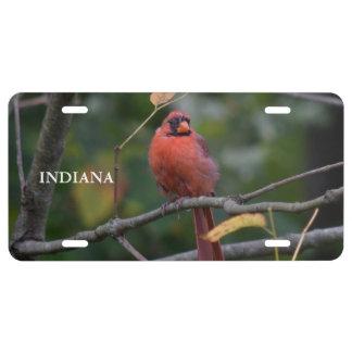 Indiana-Staats-Vogel US Nummernschild