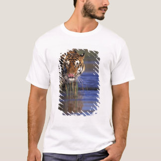 Indien. Bengalischer Tiger (Pathera der Tigris), T-Shirt