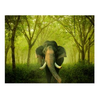 Indischer Elefant-atemberaubender großer Postkarte