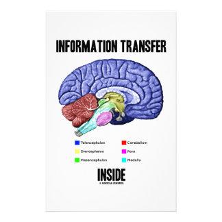 Informations-Übergangsinnere (Gehirn-Anatomie) Büropapiere