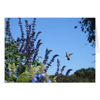 Inspirierend Kolibrikarte Grußkarte