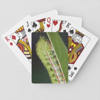 Io-Motten-Raupen-Spielkarten Spielkarten