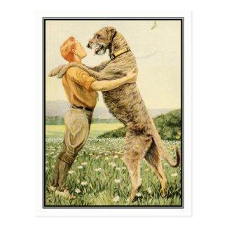 Irischer Wolfhound durch Louis Agassiz Fuertes Postkarte