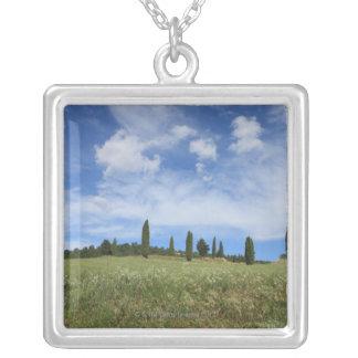 Italien, Toskana, Val D'Orcia, Landschaft mit Versilberte Kette