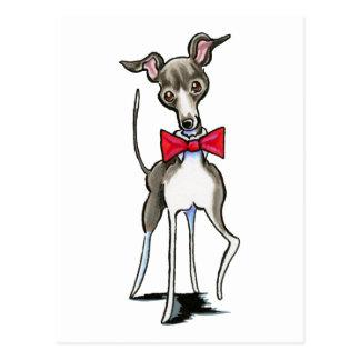 Italienischer Windhund Antonio Postkarte