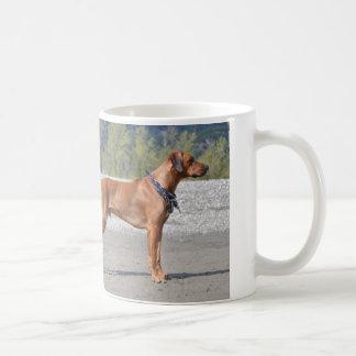Jack-Spatz! Kaffeetasse