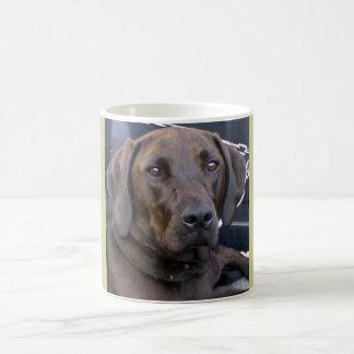 Jagdhund-HundeTasse Tasse