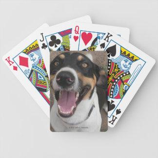 Jagdhund-Spielkarten Bicycle Spielkarten