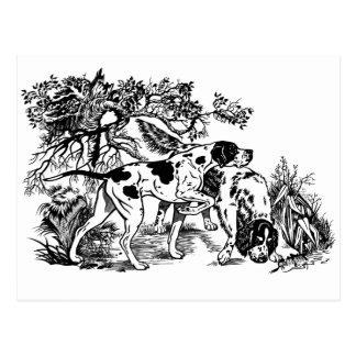 Jagdhunde Postkarte