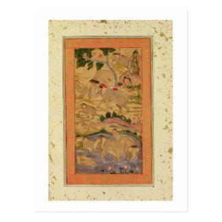 Jäger, die Elefanten, vom großen Clive Postkarte