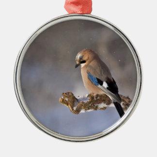 Jay Rundes Silberfarbenes Ornament