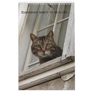Jeder will, um eine Katze zu sein. Für Kalender