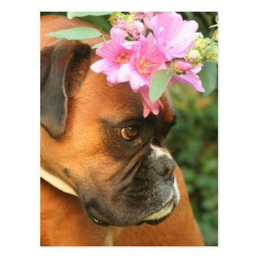 Jolie Blumenmädchen Postkarte