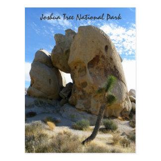 Joshua-Baum-Park-Postkarte! Postkarte