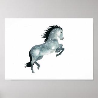 Junges und wildes, graues Pferd in der Wasserfarbe Poster