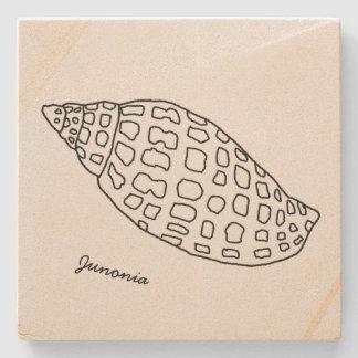 Junonia Seashell, der tropischen SteinUntersetzer
