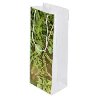 Kahle Zypresse-Samen-Kegel Geschenktüte Für Weinflaschen