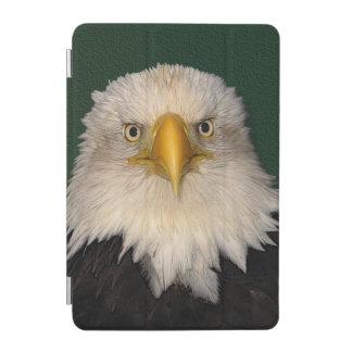 Kahler Adler-Tier-Foto-Porträt iPad Mini Hülle