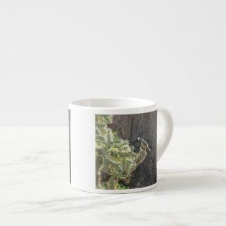 Kaktus-Zaunkönig Espresso-Tassen