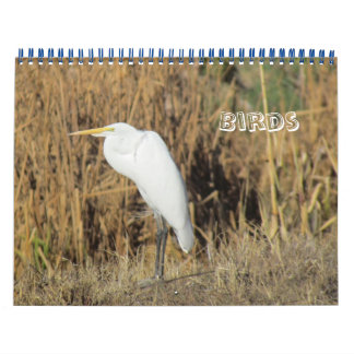 Kalender - Vögel für neues Jahr Kalender
