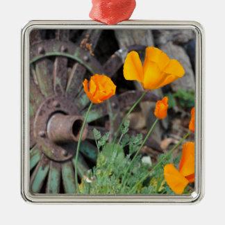 Kalifornien-Mohnblumen Quadratisches Silberfarbenes Ornament