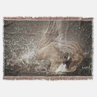 Kanada-Gans-schlagende Wasser-photographische Decke