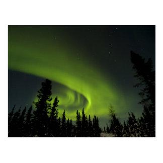 Kanada, Manitoba. Ansicht von Aurora borealis und Postkarte