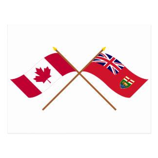 Kanada und Manitoba gekreuzte Flaggen Postkarte