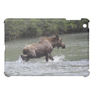 Kanadisches Elch-Tier-Tier Hülle Für iPad Mini
