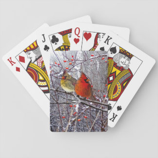 Kardinals-Waldspielkarten Spielkarten