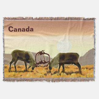 Karibu-Duell - Kanada Decke