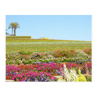 Karlsbad-Blumen-Felder Postkarte