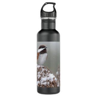 Kastanie unterstützter Chickadee im Schnee Trinkflasche