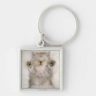 Kätzchen, das auf einem weißen flaumigen Teppich, Silberfarbener Quadratischer Schlüsselanhänger