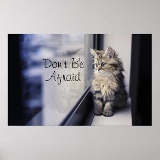 Kätzchen, das heraus Fenster schaut Poster