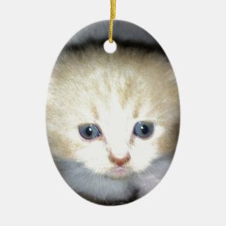 Kätzchen-Power Ovales Keramik Ornament