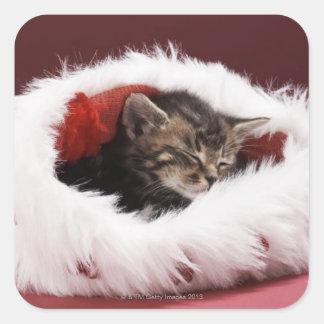 Kätzchen schlafend im Weihnachtshut Quadratischer Aufkleber