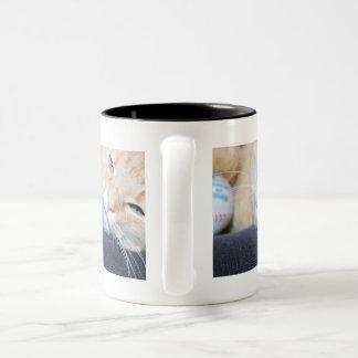 Kätzchen-Tasse Zweifarbige Tasse
