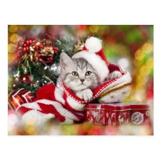 Kätzchen-Weihnachtstragende Weihnachtsmannmütze Postkarte