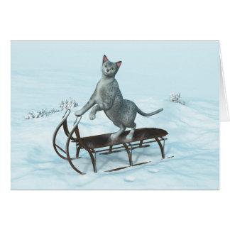 Katze auf sledding karte