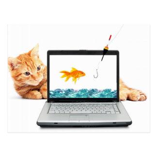 Katze, die Digital fischt Postkarten