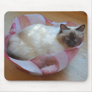 Katze in der Schüssel - Mauspads