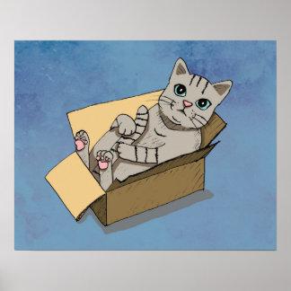 Katze in einem Sammelpack Poster