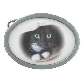 Katze in einer Tasche Ovale Gürtelschnallen