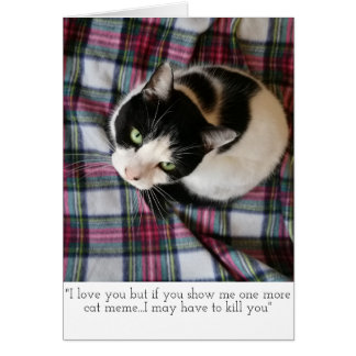 Katze Meme Gruß-Karte Grußkarte