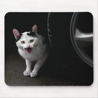 Katze mit dem Schnurrbart Mousepad